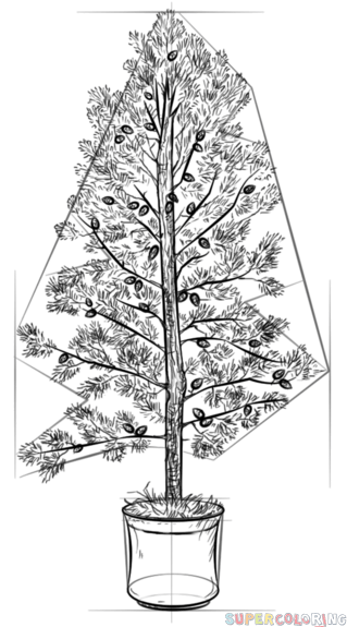 how to draw pine trees step by step pin on for kelly louise step how step pine by to draw trees