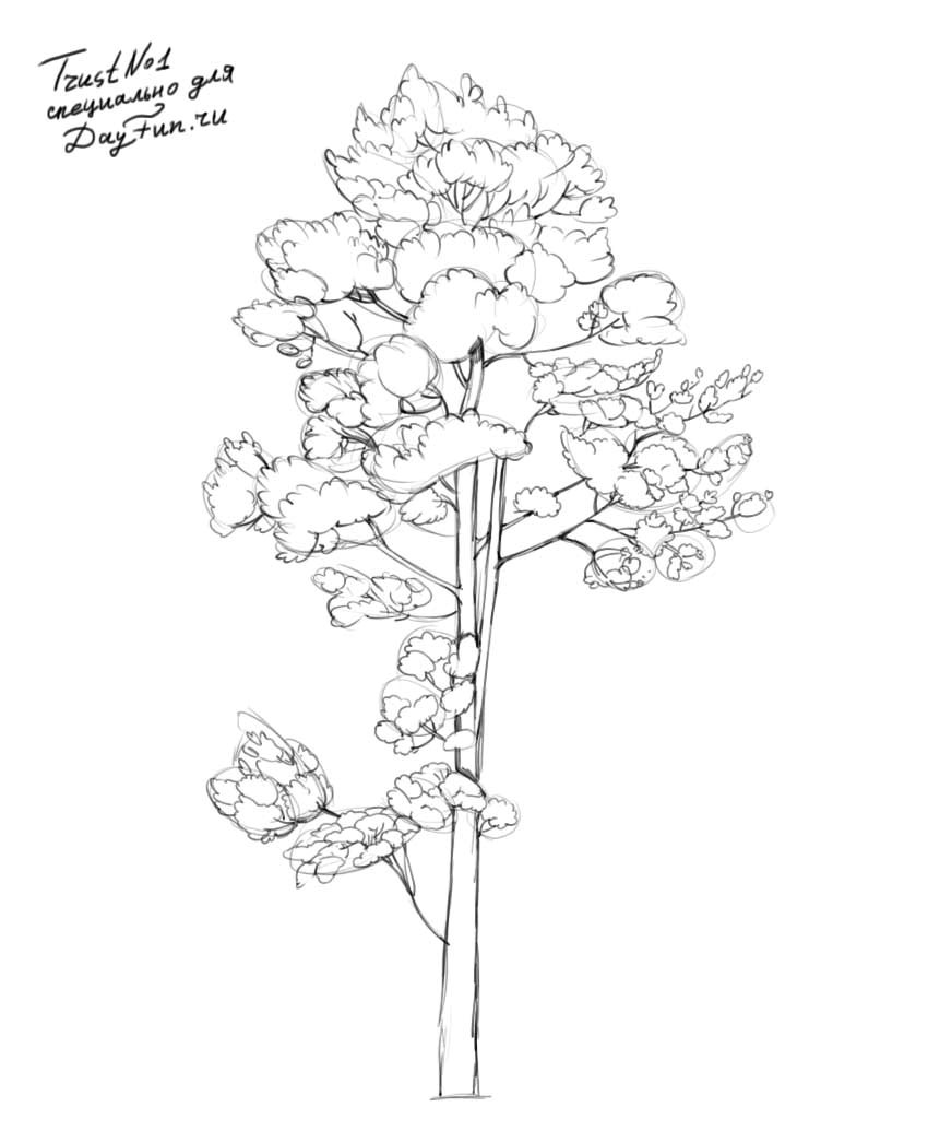 how to draw pine trees step by step pin on mountains drawing pine step draw trees by how step to