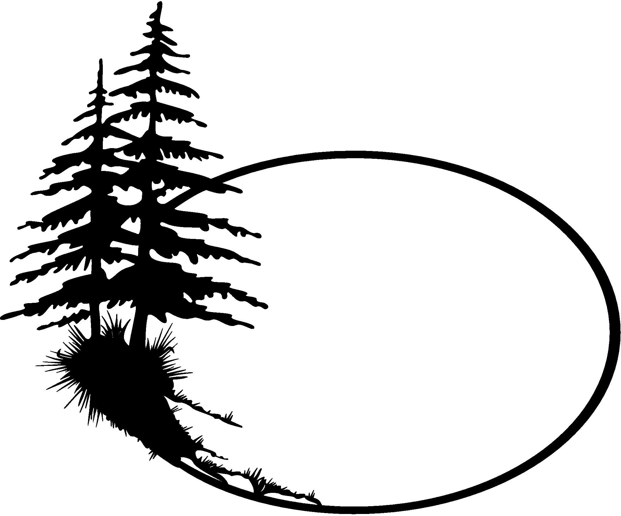 how to draw pine trees step by step pine trees in pencil drawing at getdrawings free download by trees pine how step step to draw