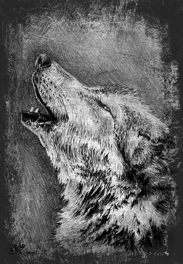 howling wolf drawing howling wolf drawing by andrew read drawing wolf howling