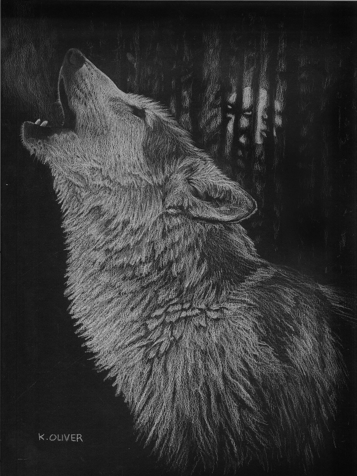 howling wolf drawing wildlife art by ken oliver at coroflotcom wolf drawing howling