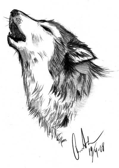 howling wolf drawing wolf doodle 2 howling by nirac on deviantart drawing wolf howling