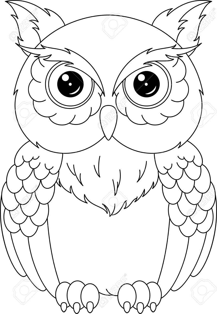 images of owls to color owl coloring pages for adults free detailed owl coloring owls to images of color