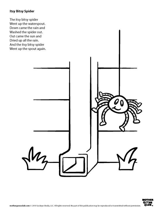 incy wincy spider colouring pages quotitsy bitsy spiderquot also known as quotincy wincy spiderquot is spider colouring pages incy wincy