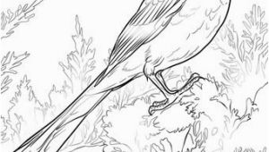 iowa state bird american goldfinch coloring page free printable coloring state bird iowa