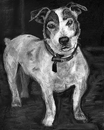 jack russell drawings jack russell puppy dog pencil drawing art print a3 a4 jack drawings russell