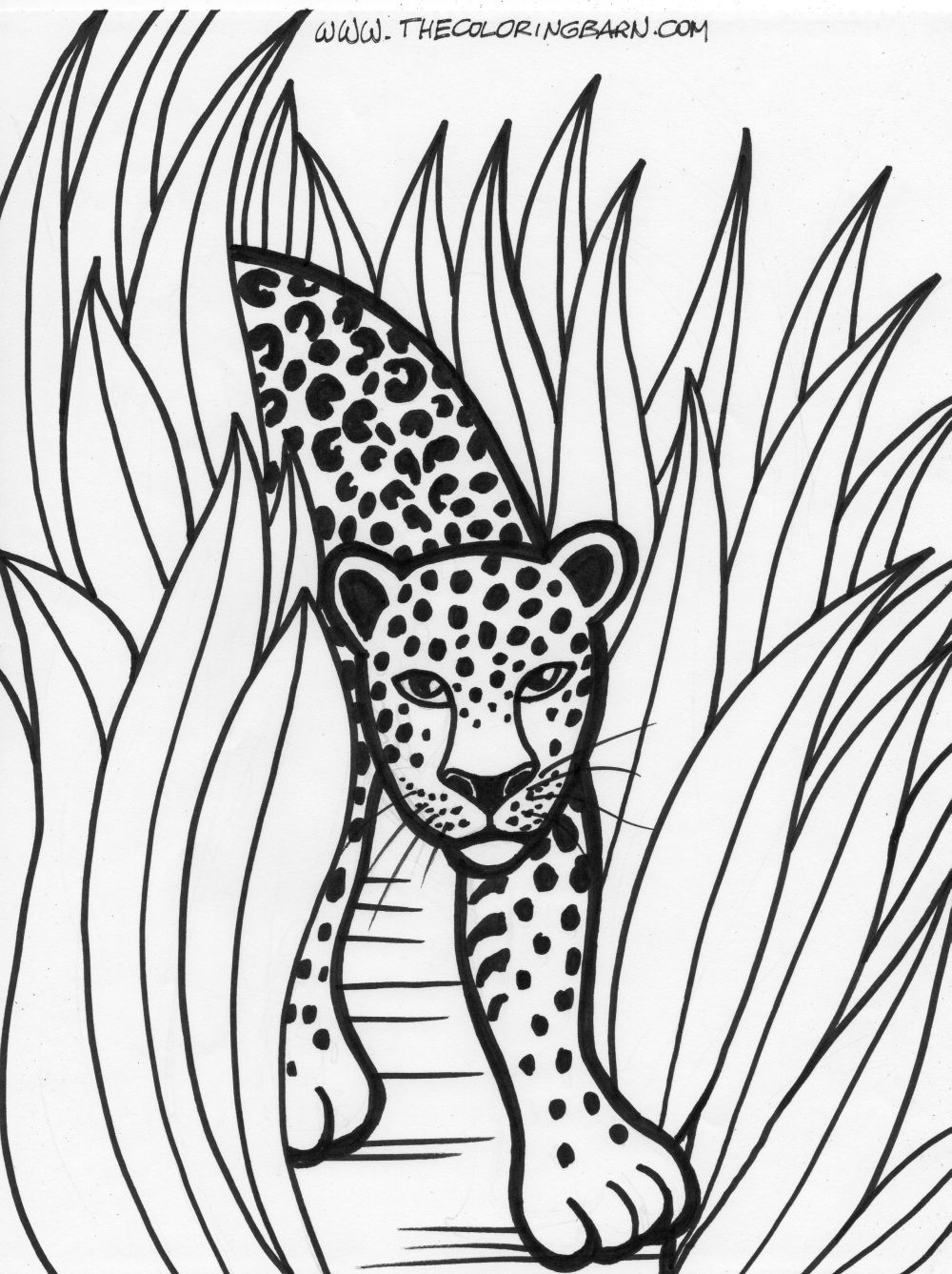 jungle coloring page jungle animals coloring pages free coloring home page coloring jungle