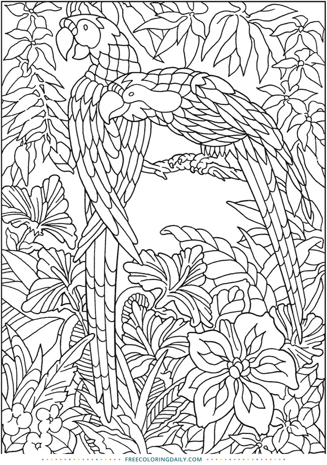jungle coloring page jungle animals drawing at getdrawings free download jungle coloring page