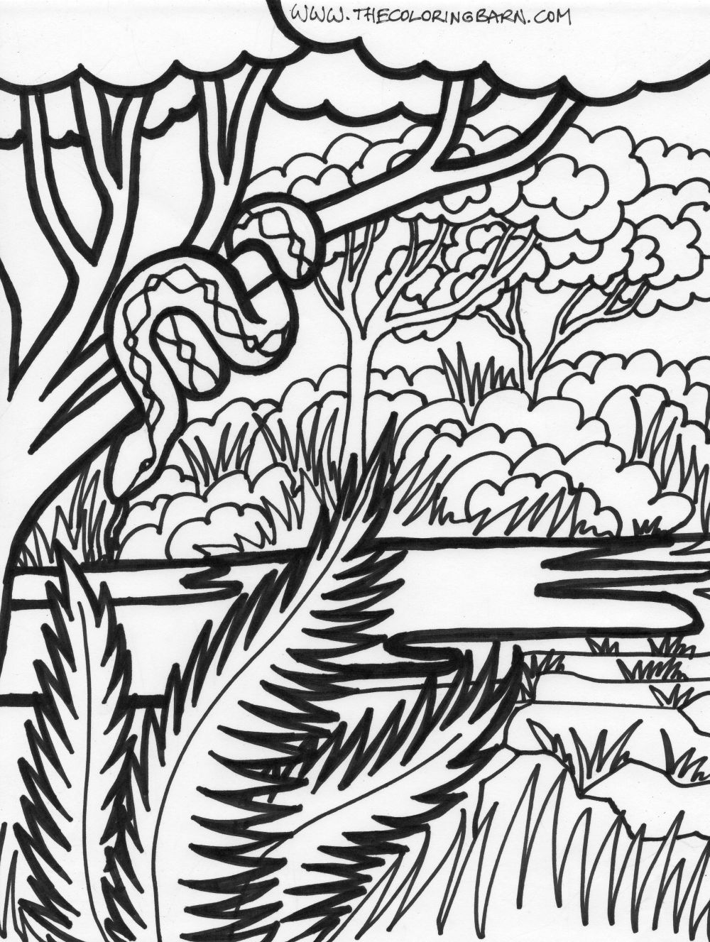 jungle coloring page jungle coloring pages best coloring pages for kids coloring page jungle