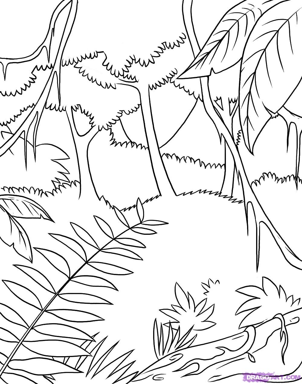 jungle coloring page jungle coloring pages best coloring pages for kids jungle coloring page
