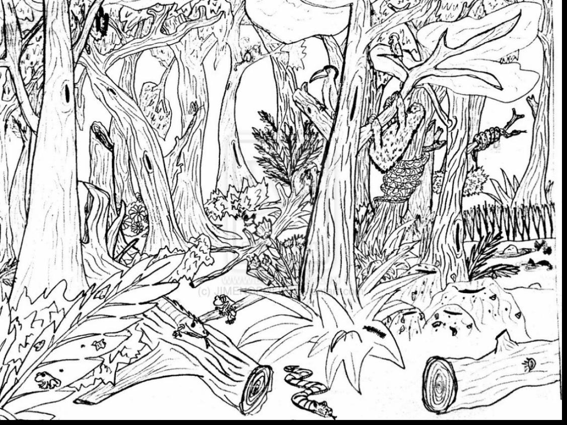 jungle coloring page jungle safari colouring in poster by really giant posters coloring jungle page