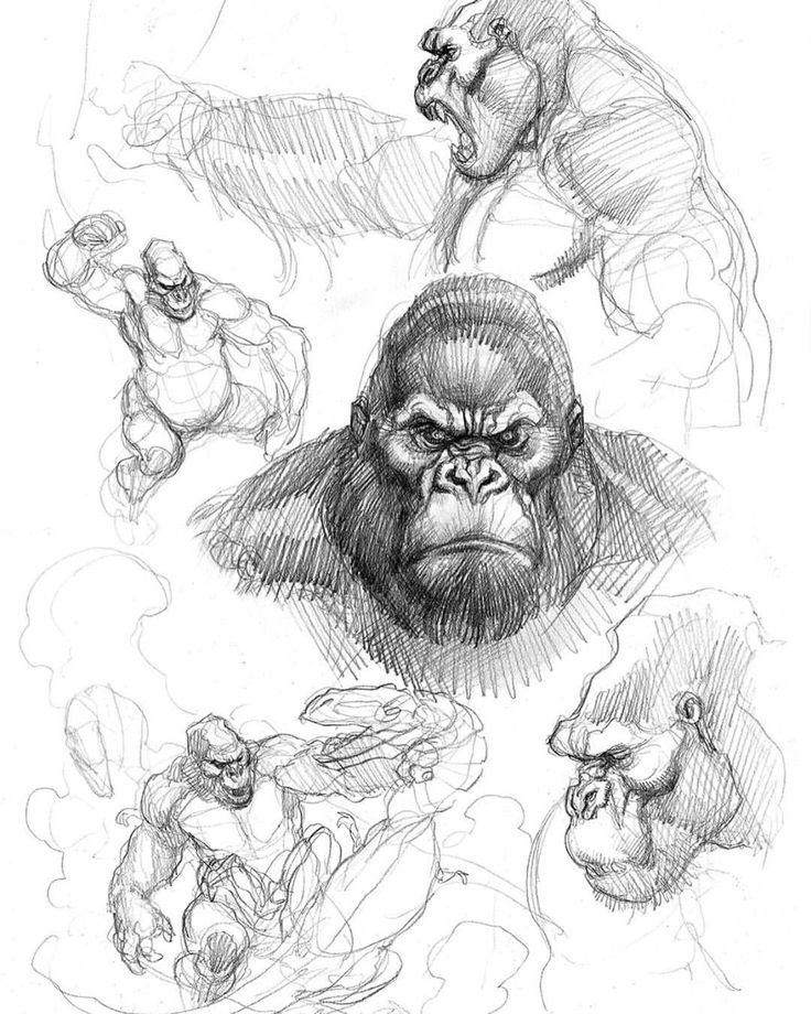 king kong drawing children39s publishing blogs post from blog cannot be drawing kong king