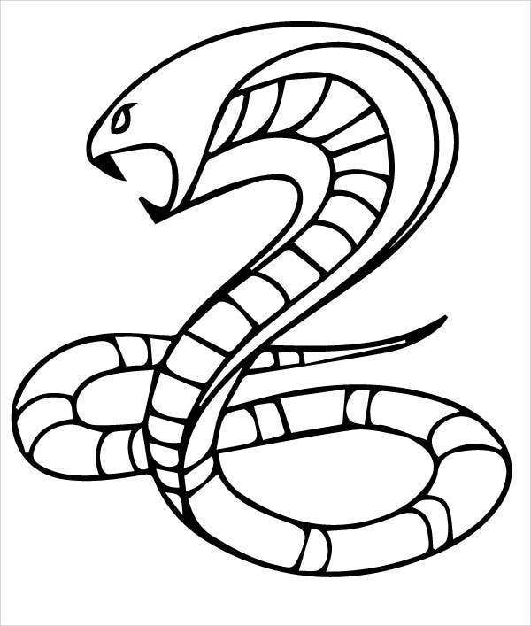 king snake coloring page cobra snake drawing free download on clipartmag king coloring page snake