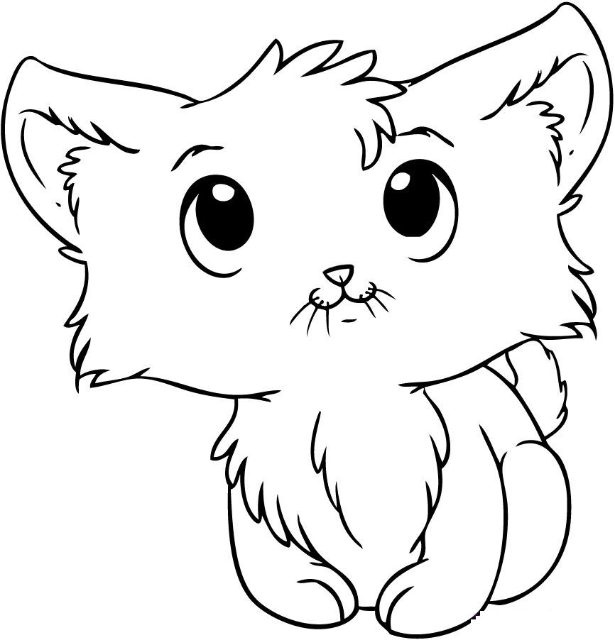 Kitten coloring pictures