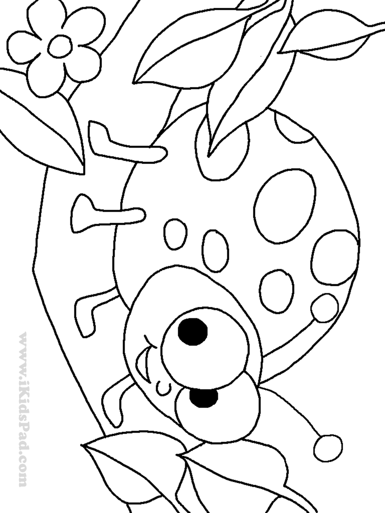 lady bug coloring page line art of cute ladybug with hearts free clip art coloring bug lady page
