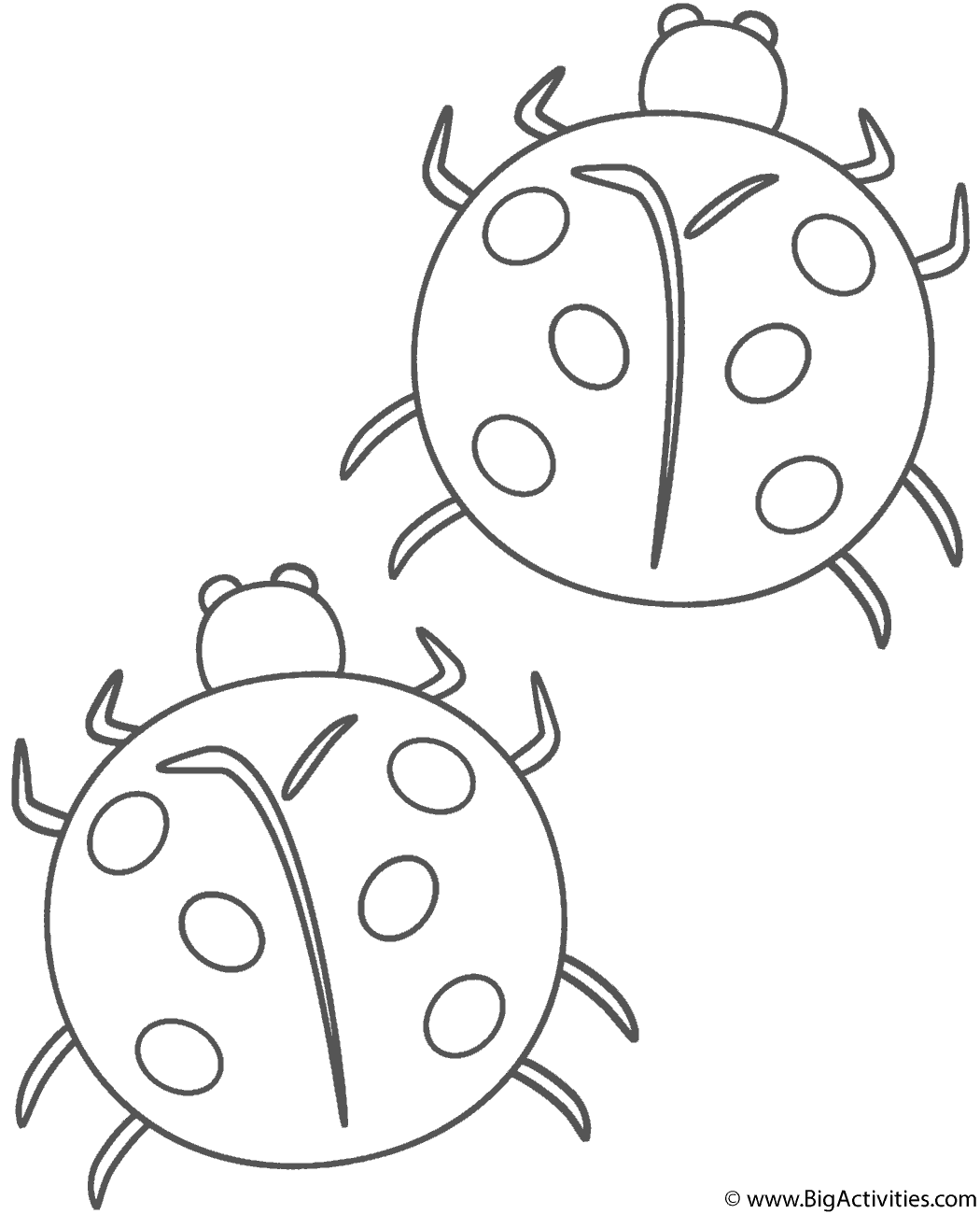 ladybug coloring images two ladybugs coloring page insects images coloring ladybug
