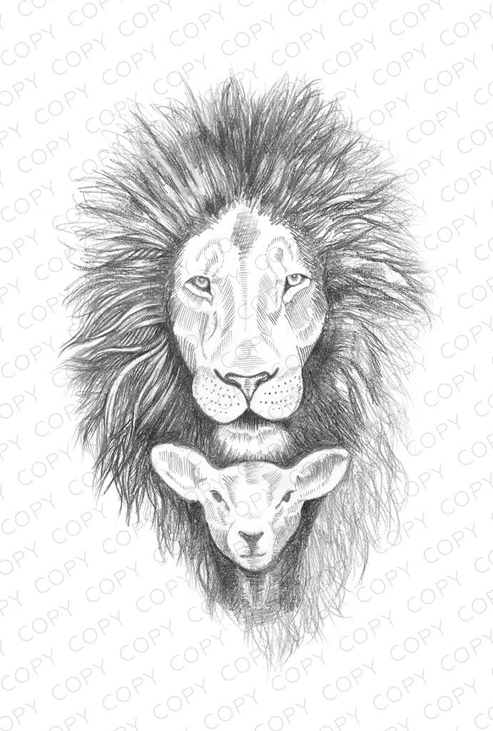 lion and lamb coloring page coloring lamb and page lion coloring lamb and page lion