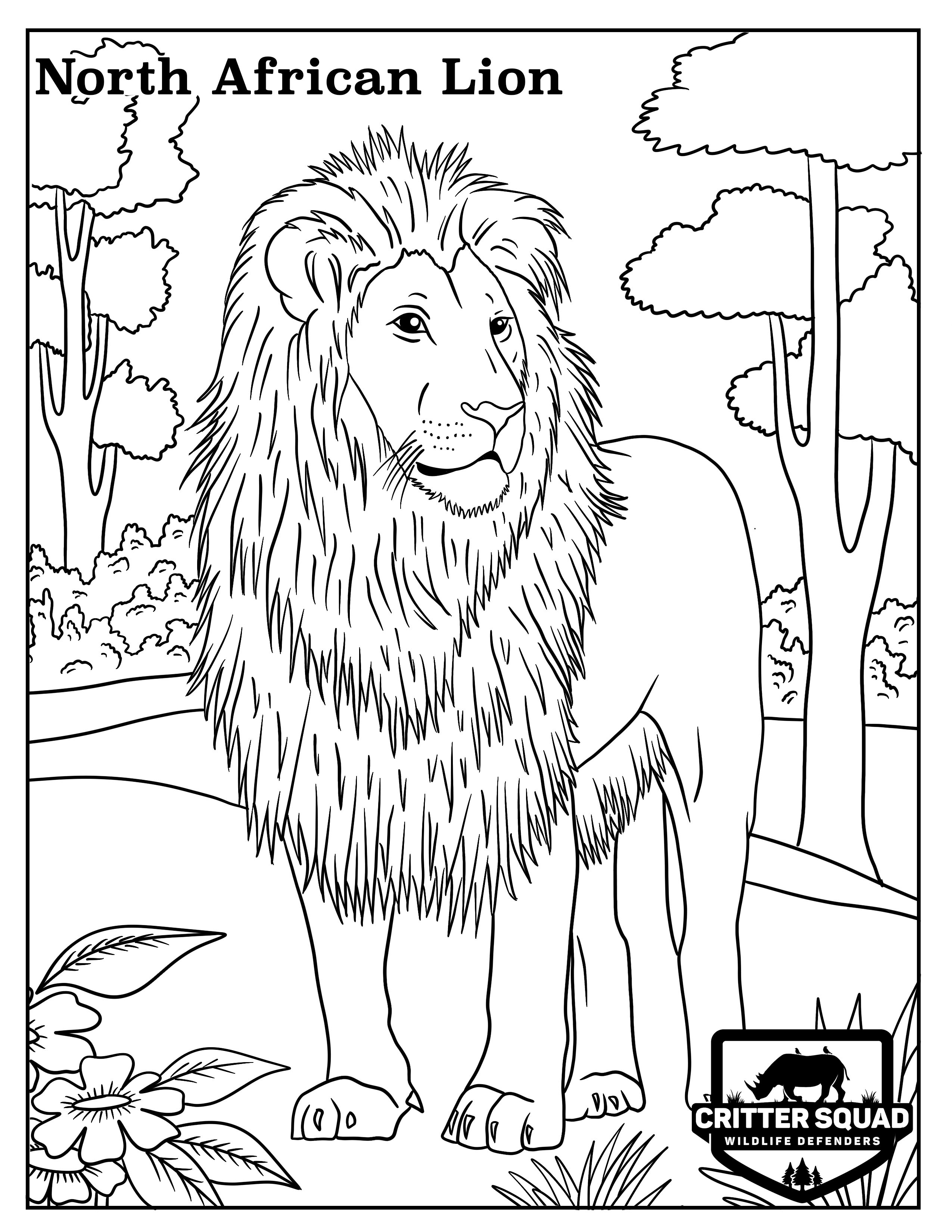 lion coloring pictures lion colour drawing at getdrawings free download pictures coloring lion