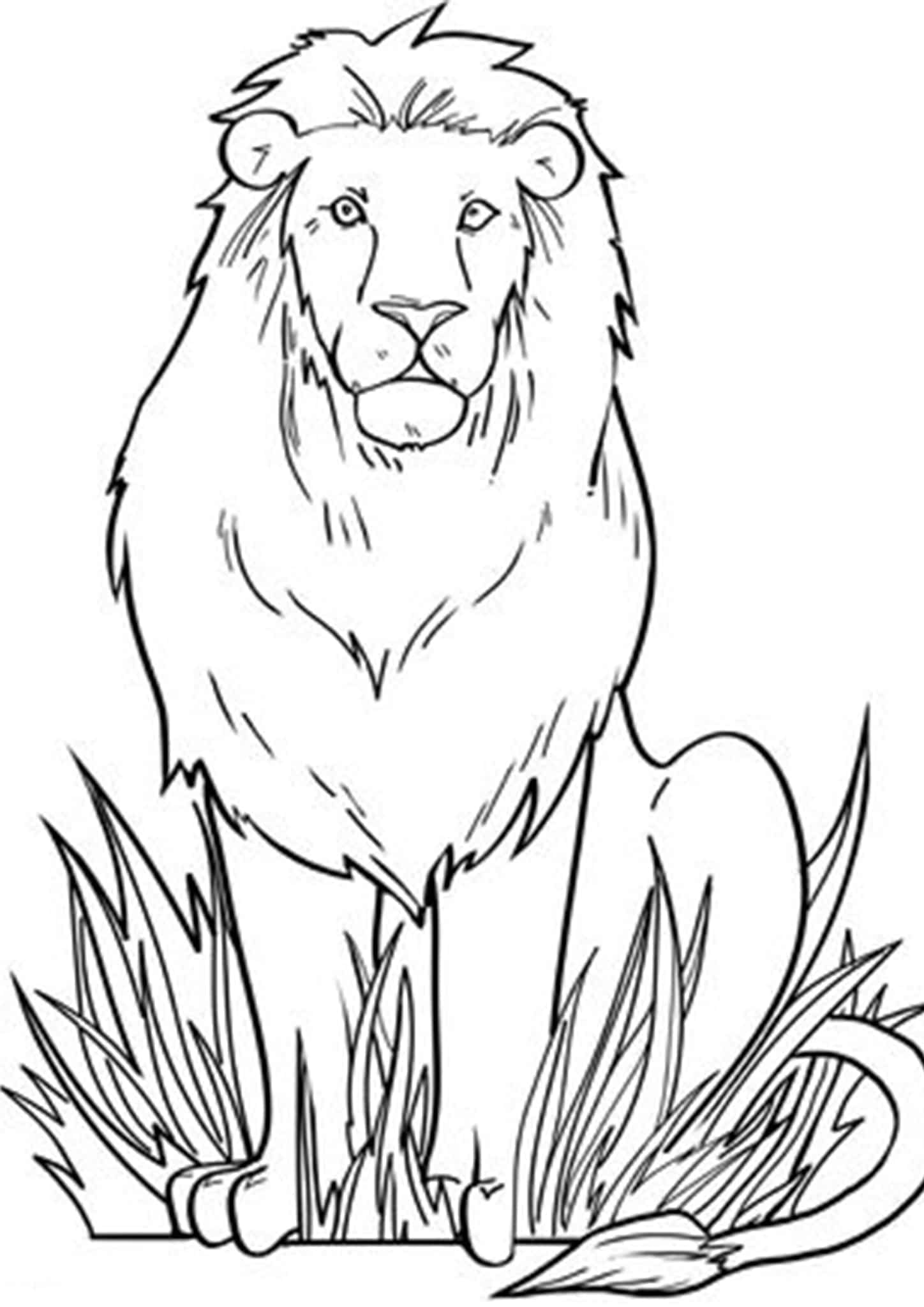 lion coloring pictures lion to print for free lion kids coloring pages coloring lion pictures