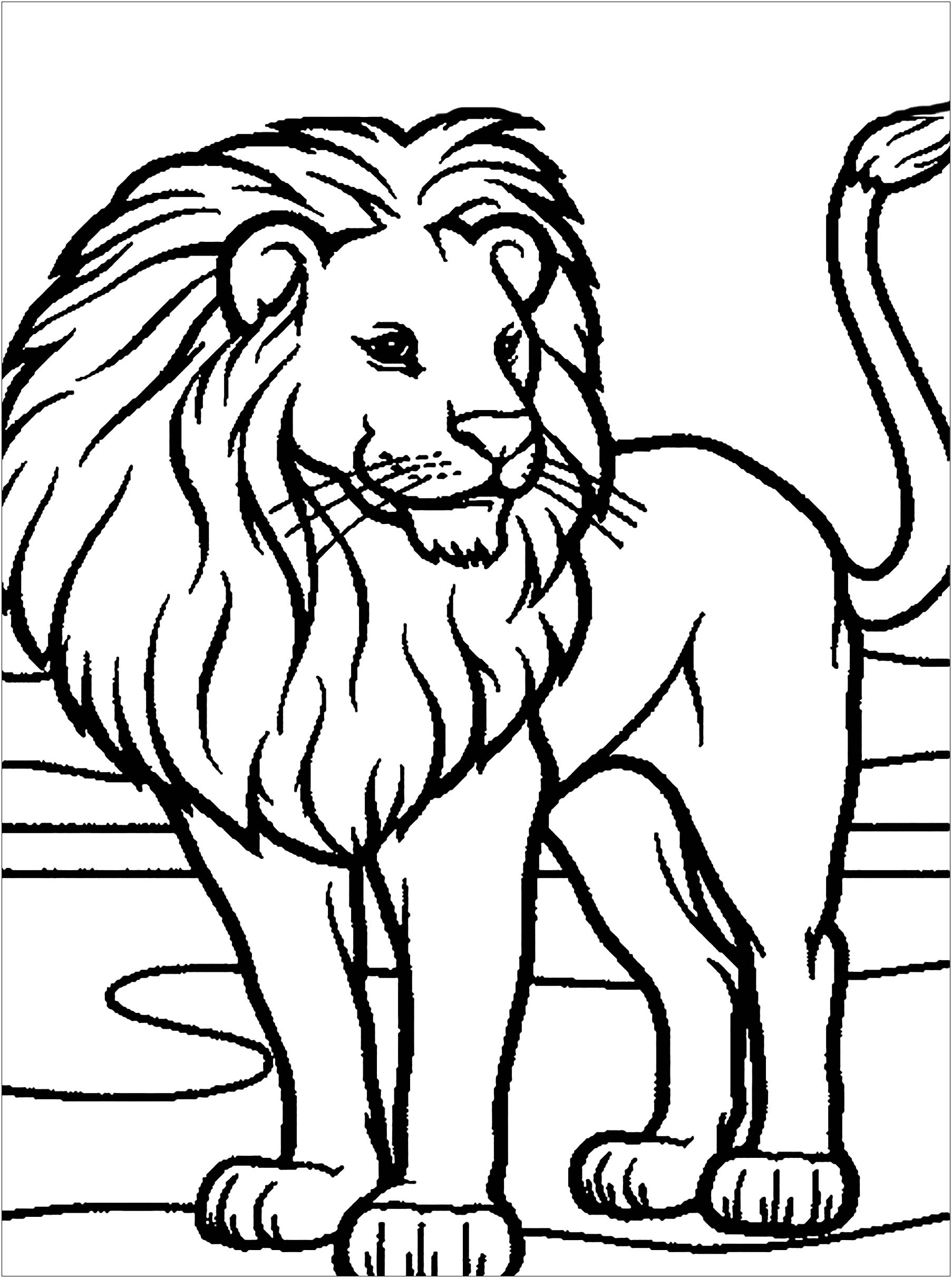 lion pictures to colour king of the jungle ecoloringpagecom printable coloring to pictures colour lion
