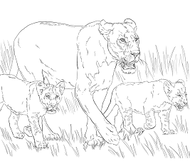 lion trapped in a net lion coloring games coloringgamesnet lion in trapped net a
