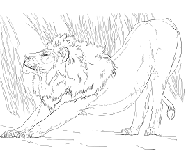 lion trapped in a net lion coloring games coloringgamesnet net in a trapped lion