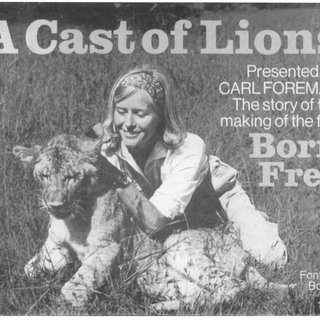 lion trapped in a net pdf the renaturing of african animals film and lion in net a trapped
