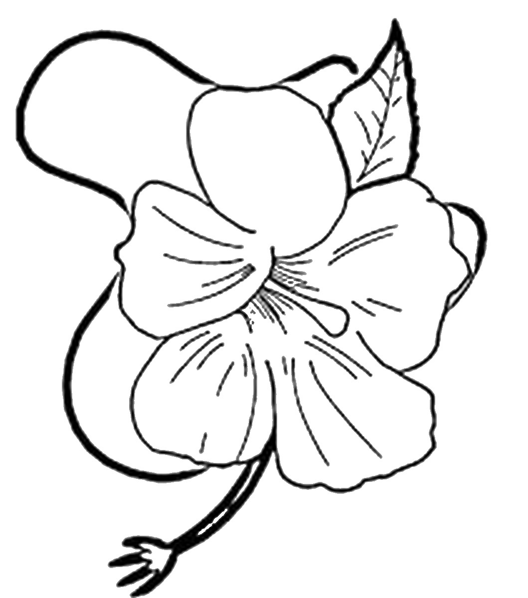 luau coloring pages luau coloring pages coloring luau pages