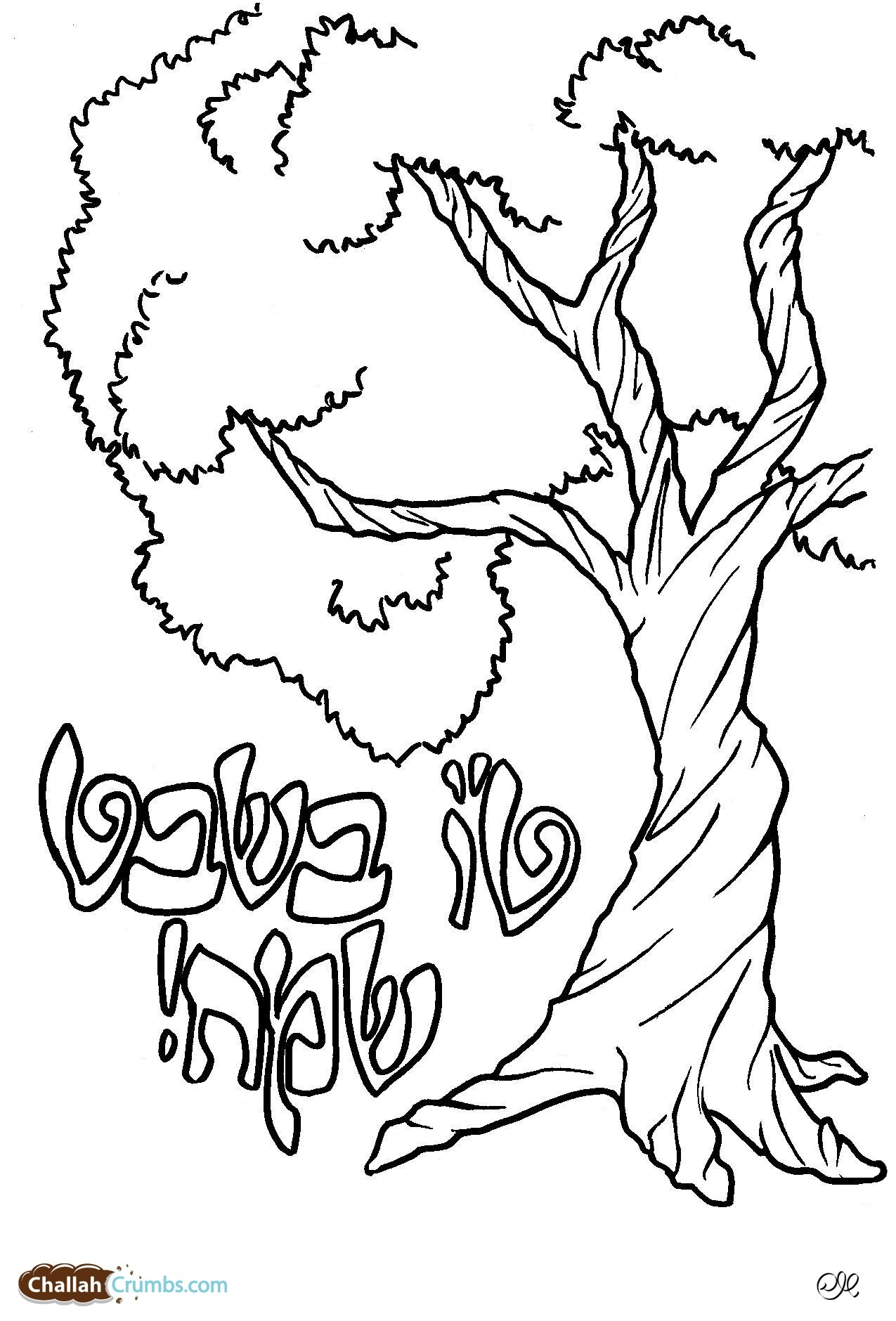 lulav and etrog picture awesome lulav and etrog coloring pages coloring pages etrog picture lulav and