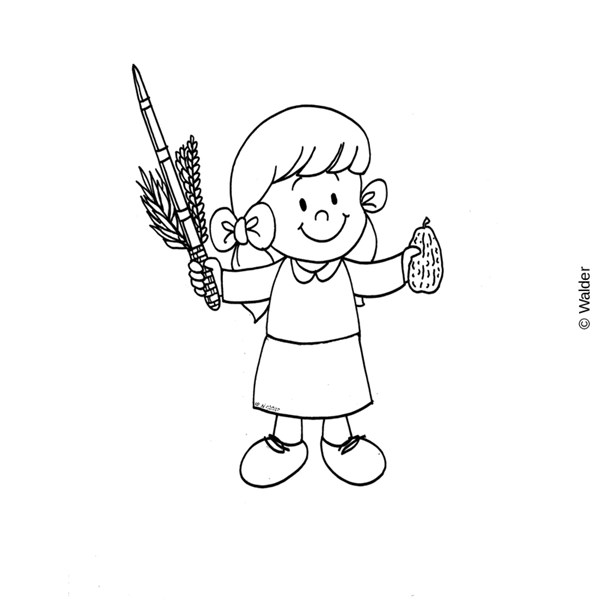 lulav and etrog picture lulav and etrog coloring pages at getcoloringscom free picture lulav etrog and