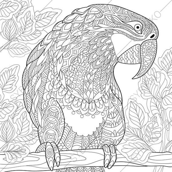 macaw colouring pages parrot animals coloring pages best coloring pages for kids pages colouring macaw