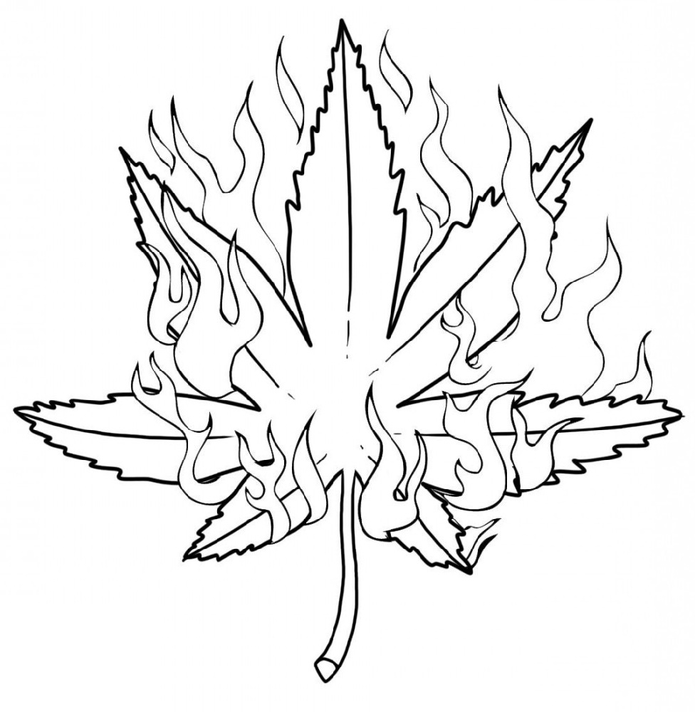 marijuana leaf coloring pages weed coloring pages pot leaf with fire free printable marijuana leaf pages coloring