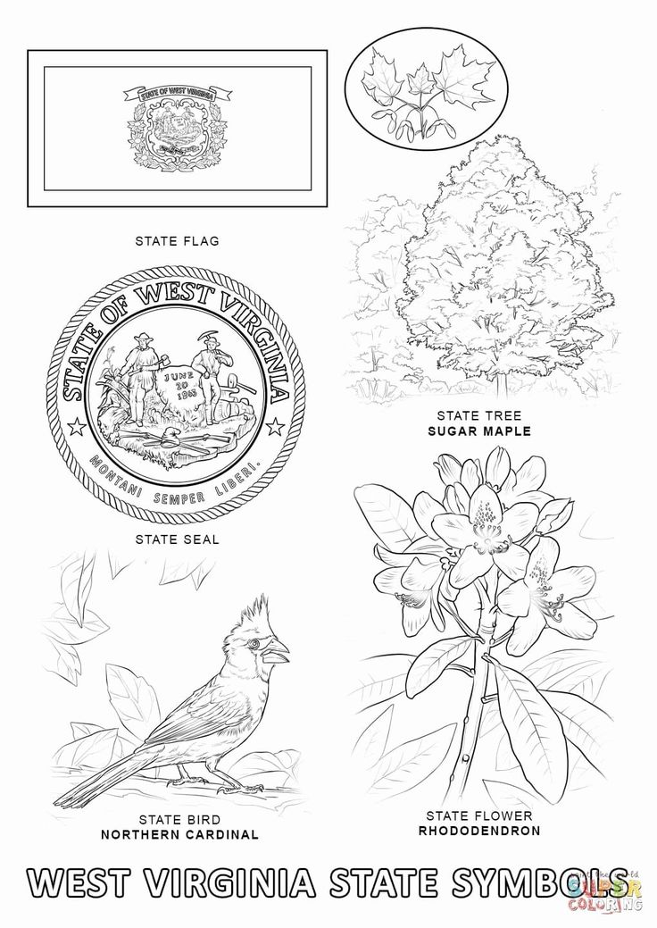 maryland coloring pages maryland flag coloring page inspirational maryland state maryland pages coloring
