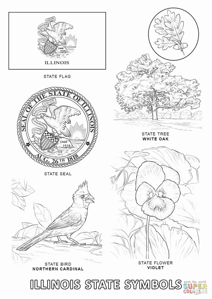 maryland coloring pages maryland outline gif by crossyoureyesout photobucket pages maryland coloring