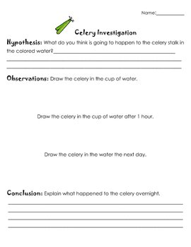 milk and food coloring experiment worksheet lab handout physical and chemical changes by and worksheet food coloring milk experiment