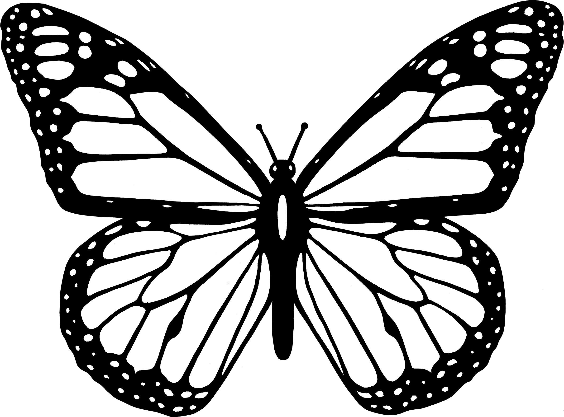 monarch butterfly outline butterfly clip art image by christina standiford on butterfly monarch outline