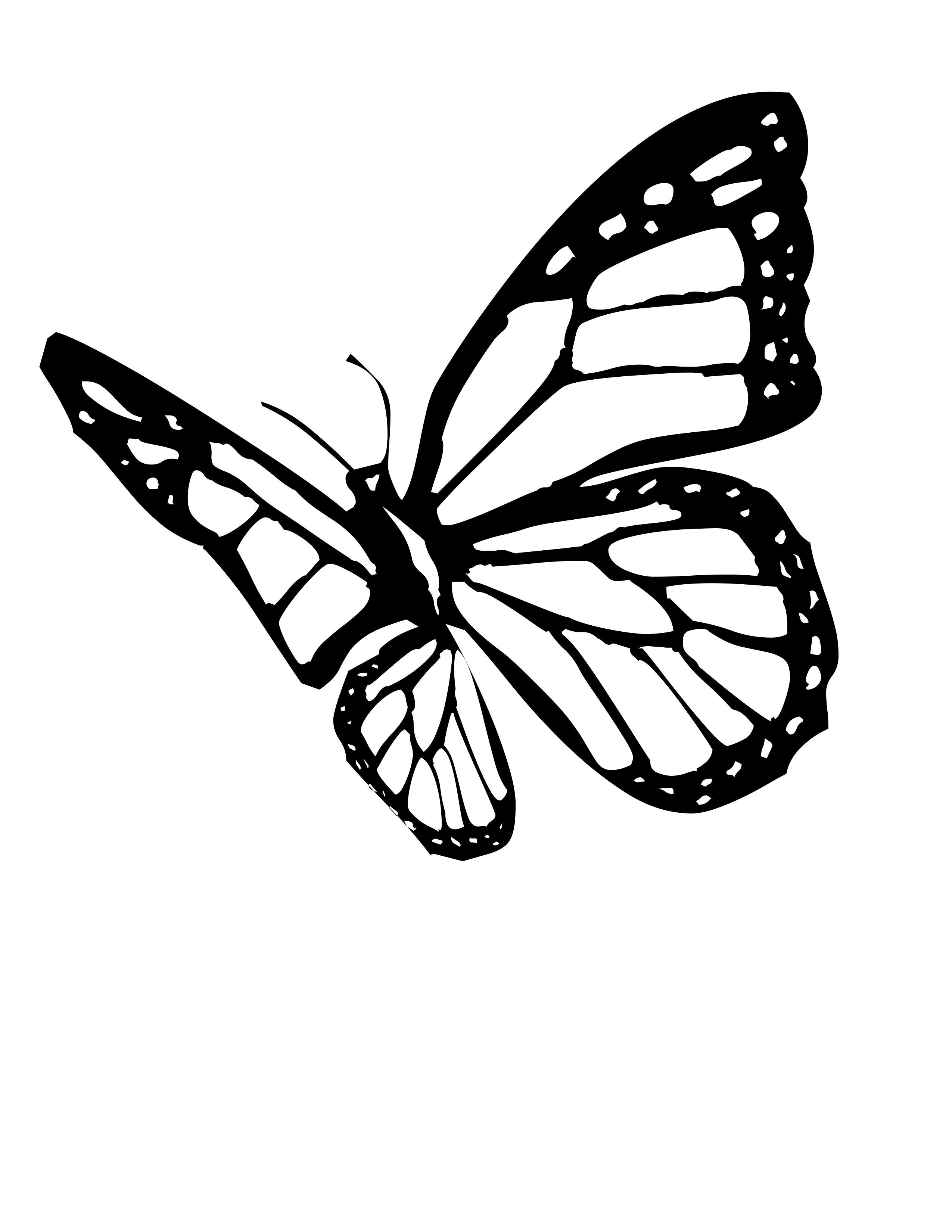 monarch butterfly outline butterfly coloring pages butterfly tattoo stencil outline monarch butterfly