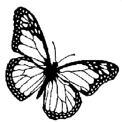 monarch butterfly outline monarch butterfly line drawing at getdrawings free download monarch butterfly outline