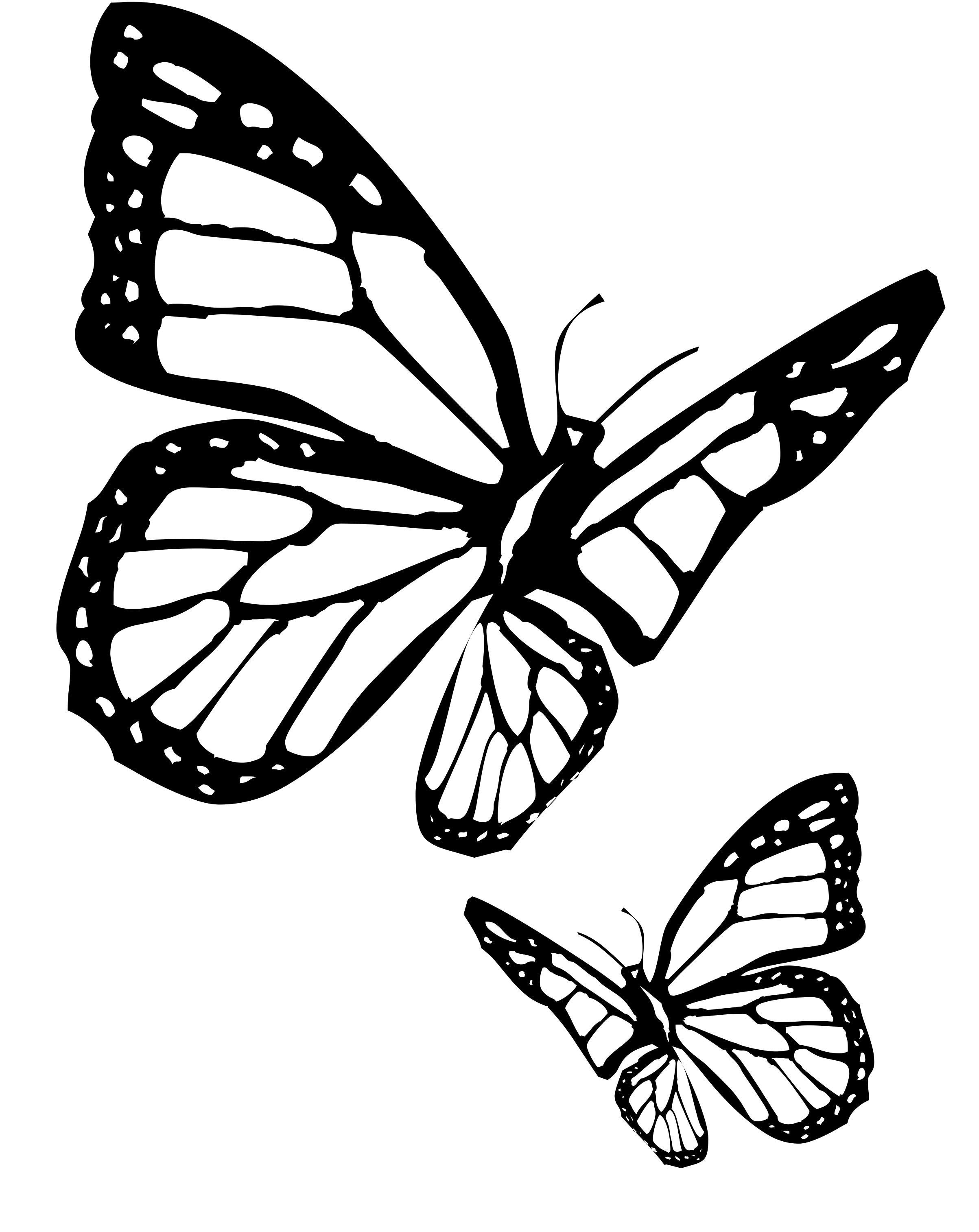 monarch butterfly outline monarch butterfly line drawing at paintingvalleycom outline butterfly monarch