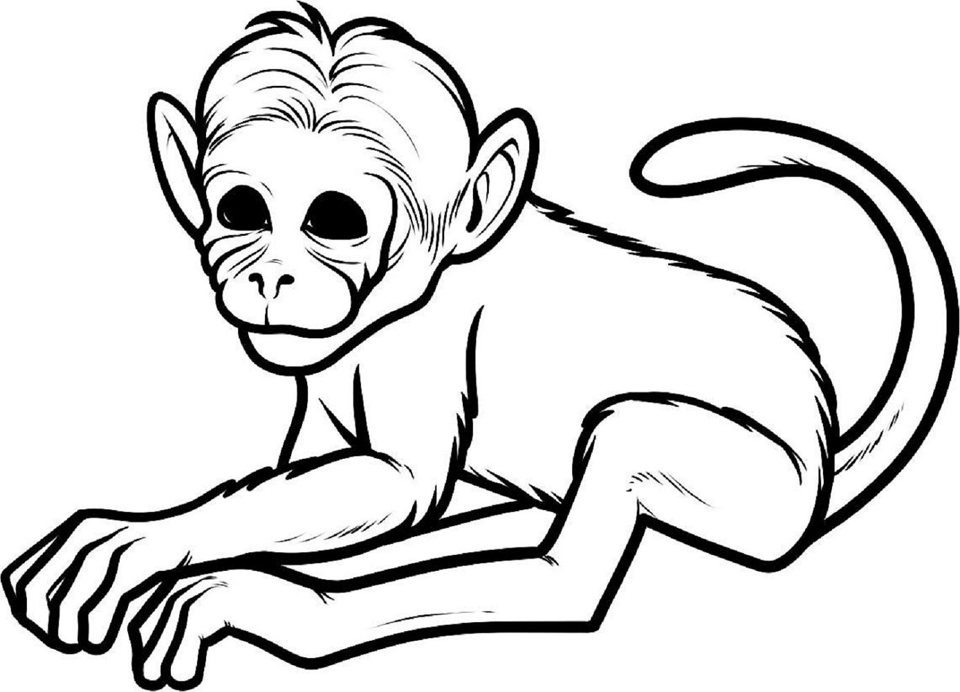 monkey pictures to color free printable monkey coloring pages for kids color monkey to pictures