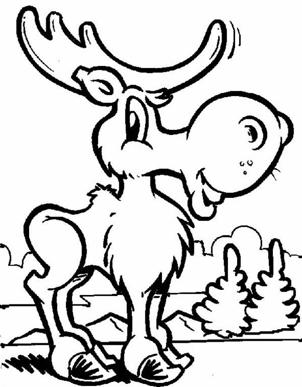 moose coloring collection of moose coloring pages for kids moose coloring
