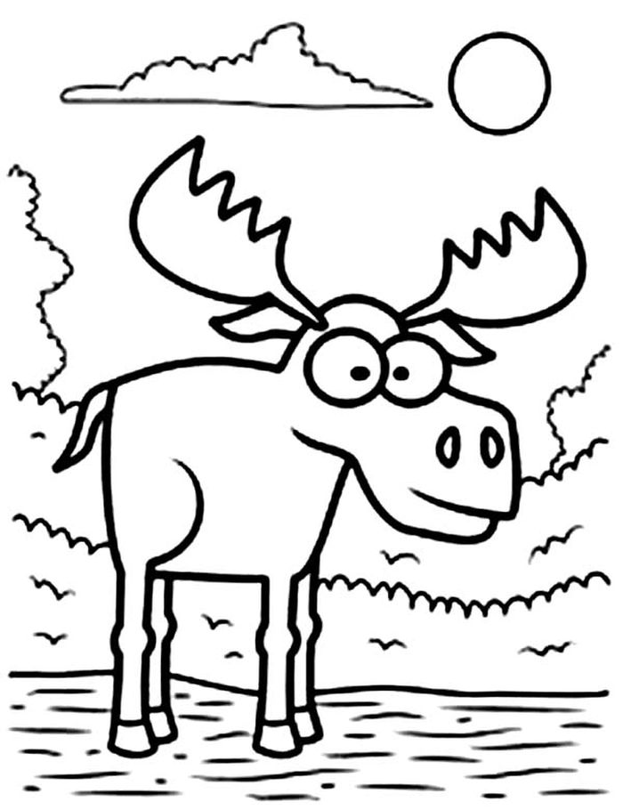 moose coloring printable moose coloring pages for kids cool2bkids moose coloring