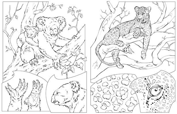 national geographic kids coloring pages national geographic kids animal coloring pages in 2020 kids pages national coloring geographic