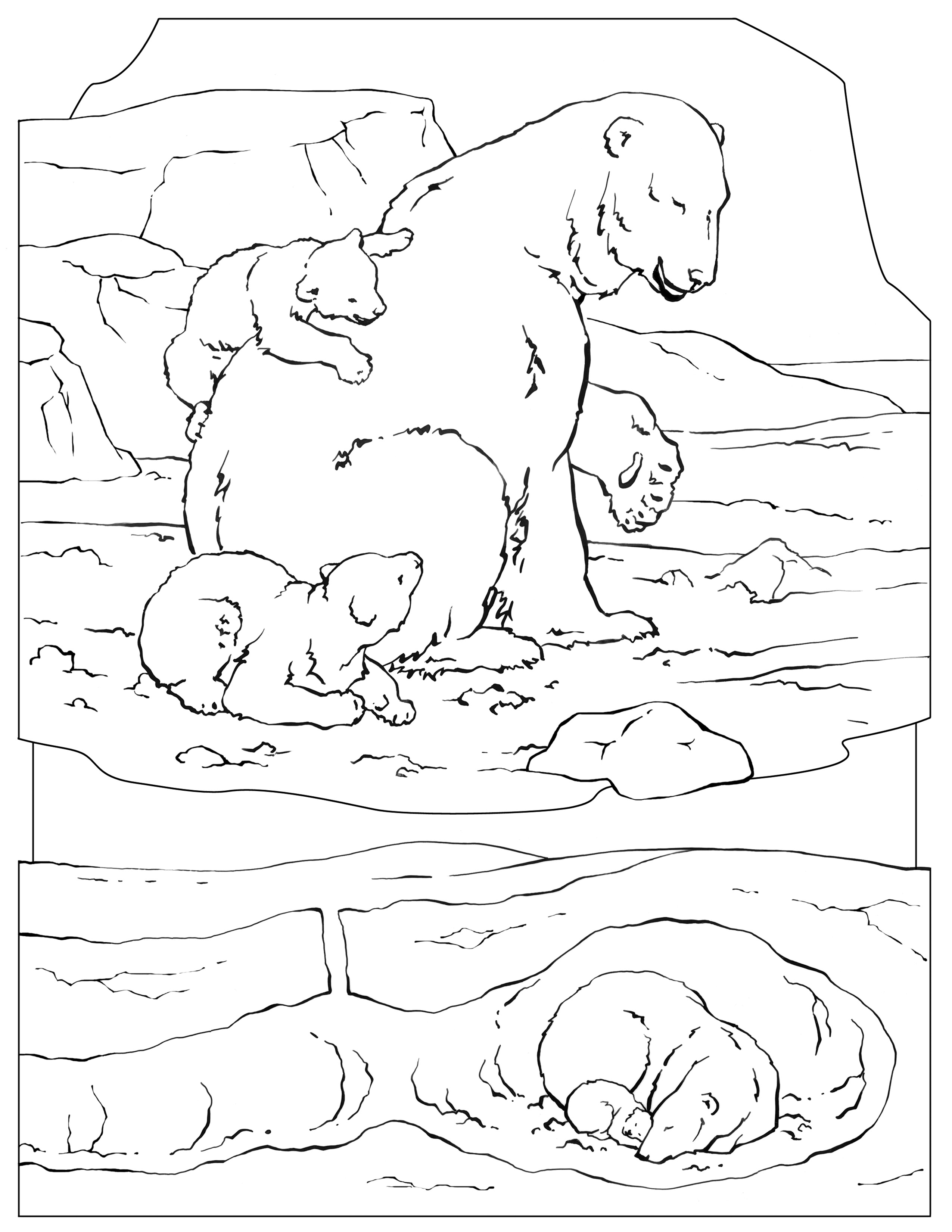 national geographic kids coloring pages national geographic kids coloring pages collection free geographic national kids coloring pages