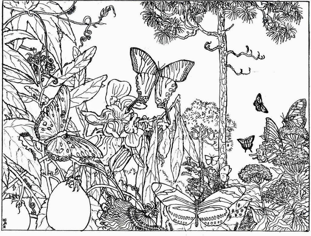 nature scene nature coloring pages beautiful landscape view of nature coloring page color luna coloring nature scene pages nature