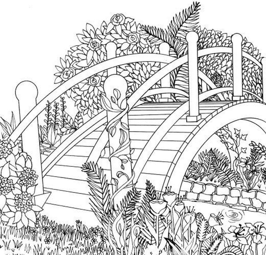 nature scene nature coloring pages coloring pages nature nature pages scene coloring