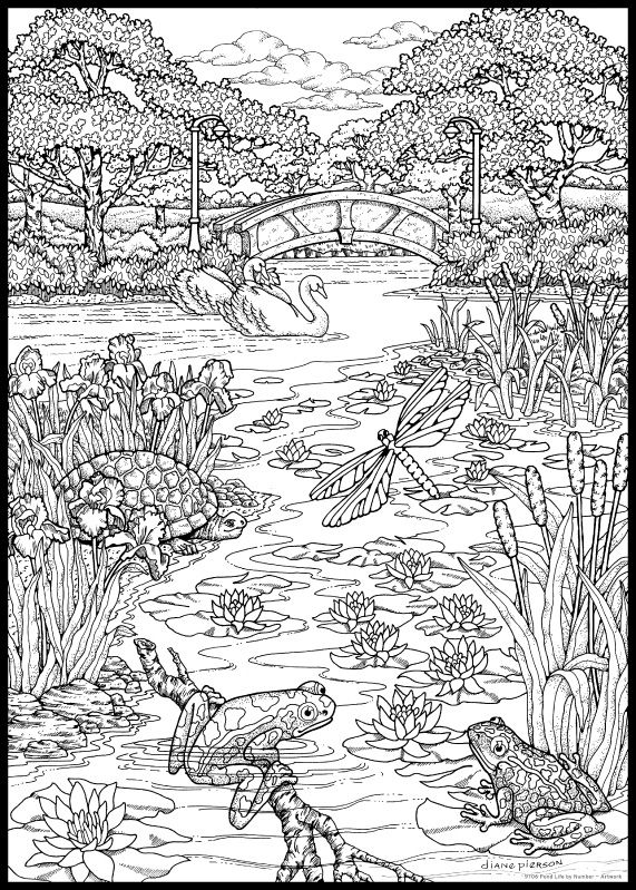 nature scene nature coloring pages free printable nature coloring pages for kids best coloring scene pages nature nature