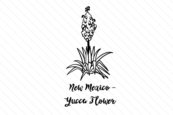 new mexico state flower 51 best images about new mexico unit on pinterest state flower mexico new