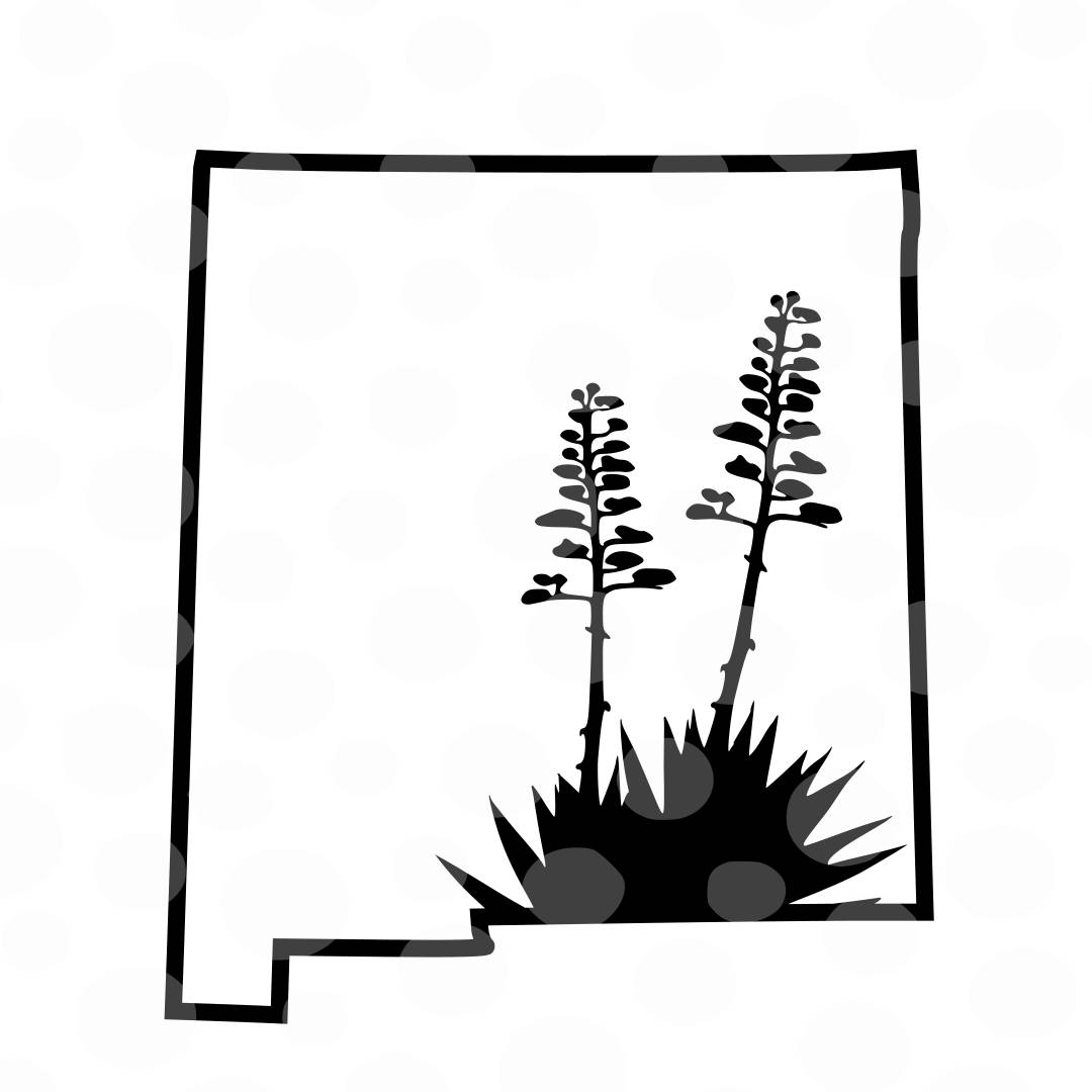new mexico state flower free printable coloring pagenew mexico state bird and new mexico flower state