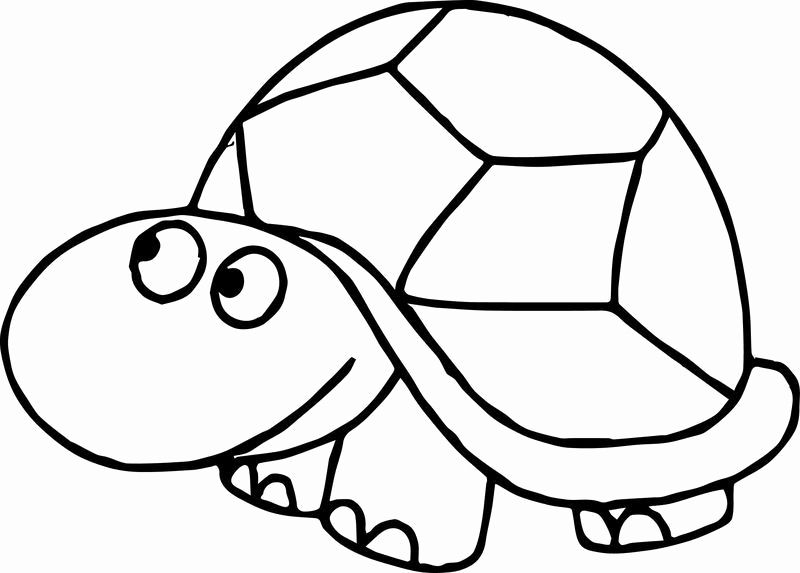 ninja turtles face coloring pages pinterest the worlds catalog of ideas pages turtles face ninja coloring